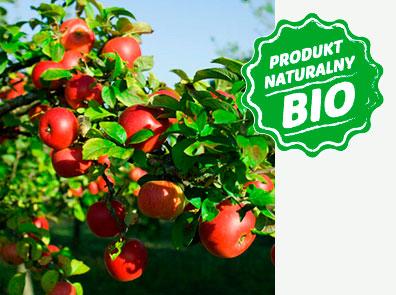UGmax owoce