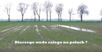 Dlaczego woda zalega na polach