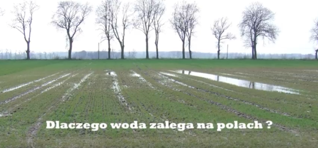 Czy wiecie dlaczego woda zalega polach?